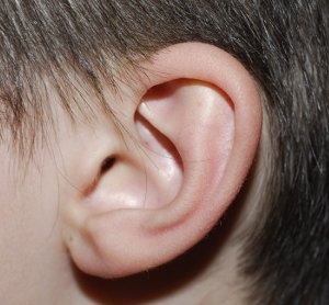 adult ear infection without symptoms